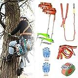 TELAM Ramponi da Arrampicata Set con Pole Climber in Acciaio Inossidabile Tree Climbing Spike Set Cintura di Sicurezza Multipla Pedale Addensato Regolabile Uso Semplice