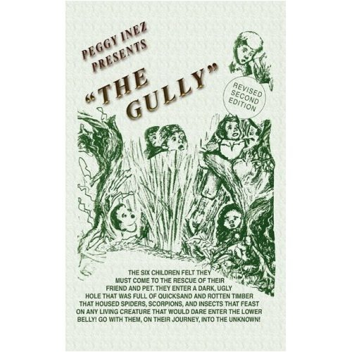 The Gully (The Summer Adventures of Maggie Sue and Terry D Book 1) (English Edition)