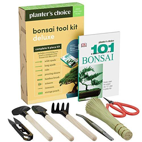 Premium Bonsai Werkzeugset + Buch
