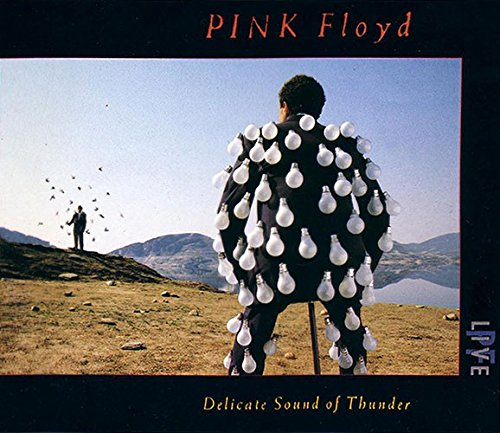 Delicate Sound of Thunder-Live by Pink Floyd -  Audio CD