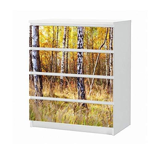 Set Möbelaufkleber für Ikea Kommode MALM 4 Fächer/Schubladen Birke Birkenwald Wald Baum Herbst Aufkleber Möbelfolie sticker (Ohne Möbel) Folie 25B1150