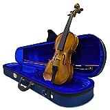 stentor violino student i 3/4 con astuccio archetto pece e accessori