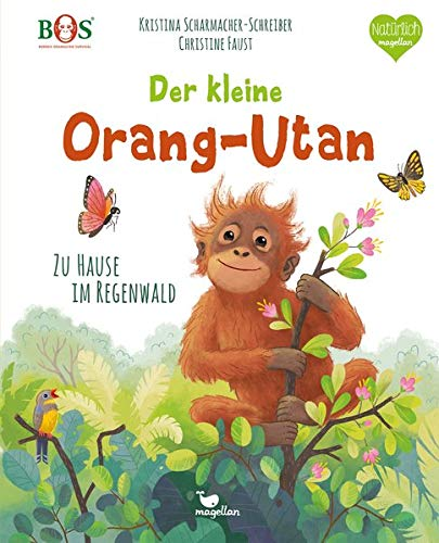 Der kleine Orang-Utan - Zu Hause im Regenwald