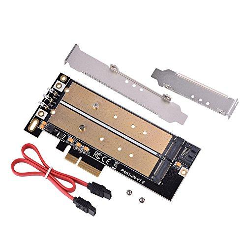 Clave NGFF/M.2 B + M 2 puertos tarjeta adaptadora