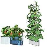 eSuperegrow Hydroponics Growing System for Indoor Outdoor Garden,7L Large Hydroponic Gardening System with Trellis for Cucumber Tomato Pepper Mint,Ideal Gardening Gifts for Women(Pump,7L,67' Trellis))