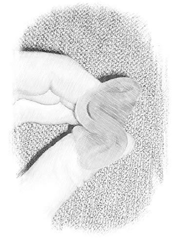 EmmaCup, die faltbare Menstruationstasse – inklusive Clic-Clac-Dose, Stoffbeutel und Becher zur Reinigung - 6