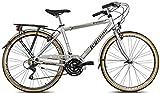 Legnano Ciclo 300 Sanremo, City Bike Uomo, Grigio/Nero, 48...