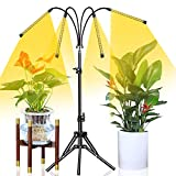 Abonnyc Grow Light with Stand LED Growing Light Full Spectrum for Indoor Plants with Timer,Plant Growing Lamps for Seedlings with Adjustable Tripod&Gooseneck,4 Switch Modes 6 Brightness Settings