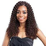 FreeTress Synthetic Hair Crochet Braids Water Wave Bulk 12' (6-Pack, 1B)