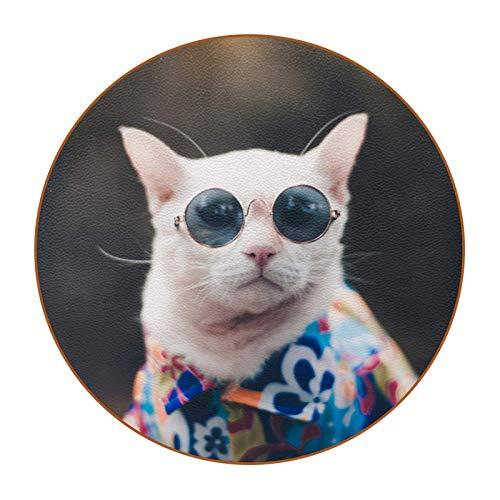 Getränkeuntersetzer 6er Set Coole Cat Sonnenbrille Tischplattenschutz Für Alle Tische, Granit, Speckstein, Sandstein, Marmor, Perfekter Weicher Untersetzer Für Alle Trinkgläser 11cm