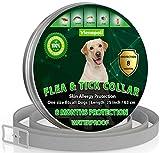 Collar ajustable para pulgas y garrapatas para perros pequeños, medianos y grandes | Impermeable | Tratamiento de pulgas | Protección hasta 8 meses | 100% Natural BIO Organico