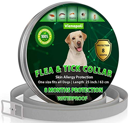 Collier réglable anti-puces et tiques pour chiens - Imperméable - Protection Efficacité 8 Mois - Huile Essentielle Naturelle