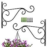 SIYI-XIU 2Pcs Blume Ständer Haken Wandhalterung für Hängekörbe robuste Gartenzaun-Haken Hängepflanzen-Halterung Gartendekoration (mit Schrauben)