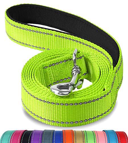 Joytale Hundeleine mit Bequemen Gepolsterten Griff, Reflektierend Hunde Leine für Ausbildung und Wandern, Nylon Hundeleine Für Mittlere und Klein Hunde,1.2m × 2cm,Grün