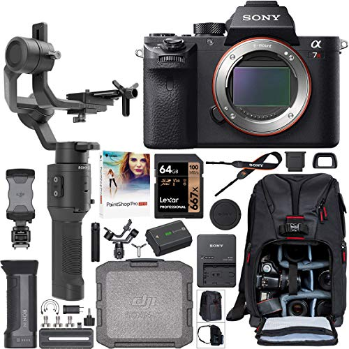Sony a7R II Full-Frame Alpha Mirrorless Camera 42.4MP Body a7RII ILCE-7RM2/B Filmmaker's Kit with DJI Ronin-SC 3-Axis Handheld Gimbal Stabilizer...