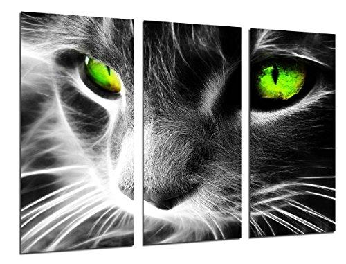 Impresión calidad fotográfica de gato