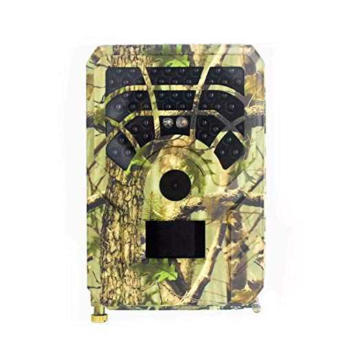 tidystore Trail Camera, cámara de caza – Cámara de seguridad de reconocimiento impermeable IP54 HD con visión nocturna para juegos de caza y observación de la fauna salvaje