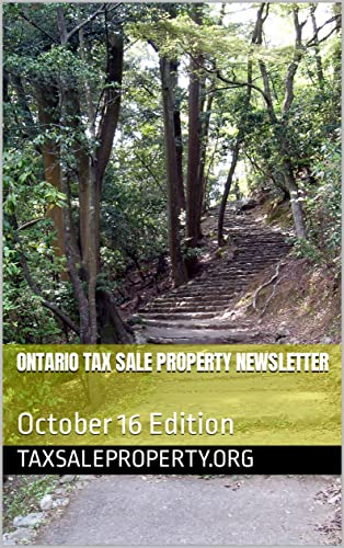 Ontario Tax Sale Property Newsletter: October 16 Edition (English Edition)