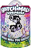 Hatchimals Surprise Deeriole Twins - Exclusive Hatching Egg Plush Interactive Mystery Characters