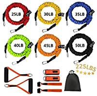 Sunsign 12-Pcs Stackable Resistance Band Kit Extreme Workout Total-Body Training Home Gym Best for Beginner Professional Orange from Sunsign