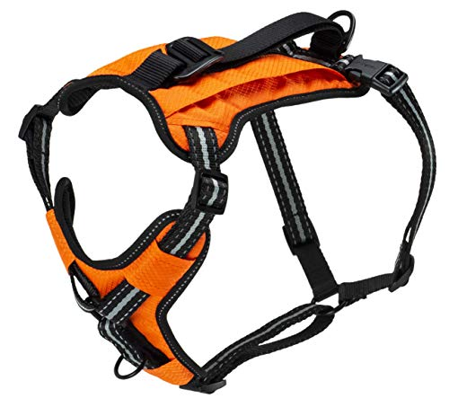 PetSafe Walk-Along Outdoor Dog Harness, No-Pull Solution, Water-Resistant, Zippered Pouch for Storage, Built-in Car Restraint, Medium