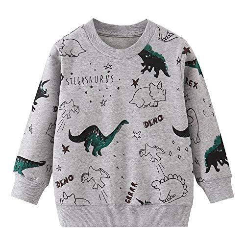 EULLA Jungen Pullover Kinder Sweatshirt Dinosaur Jumper Baumwolle Langarm T Shirts