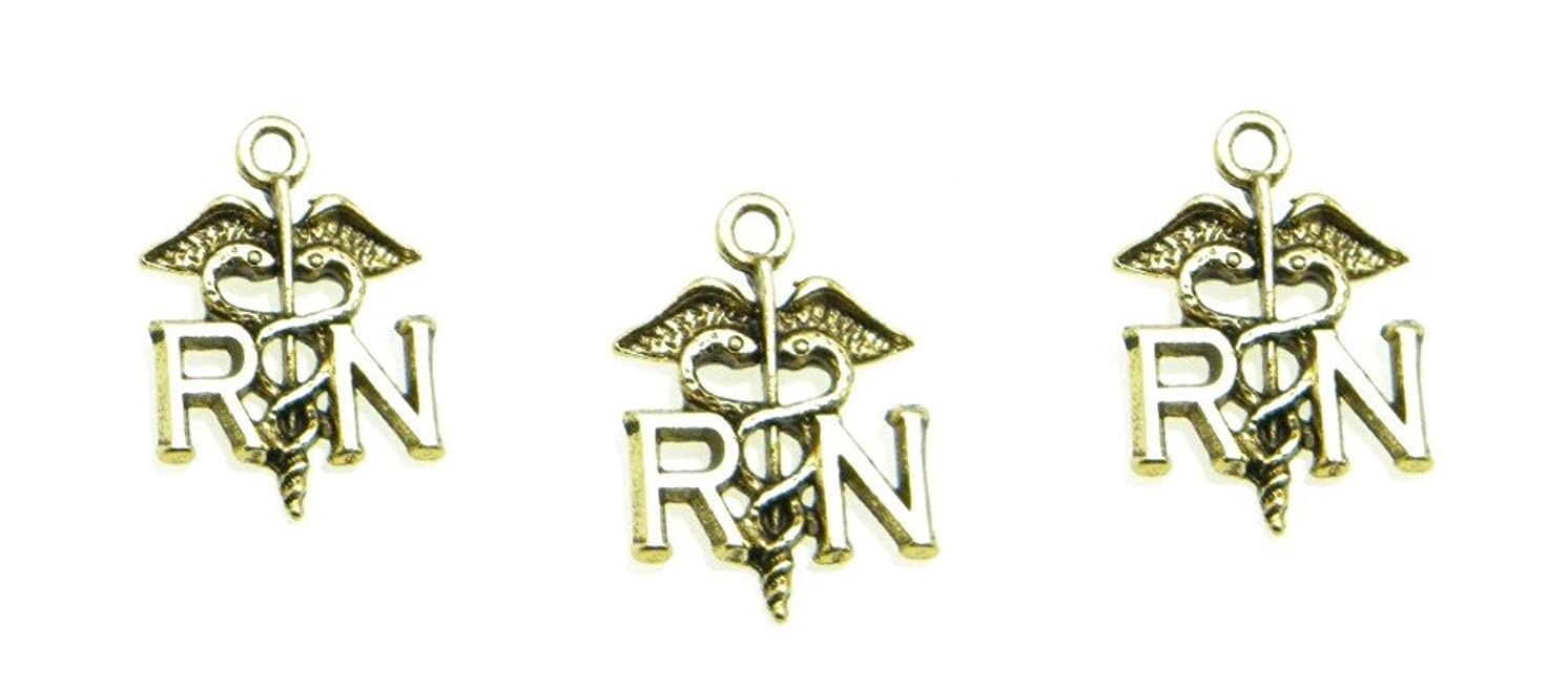 PlanetZia 6pcs Registered Nurse RN Charms USA Made for Jewelry Making TVT-D600 (Antique Gold)