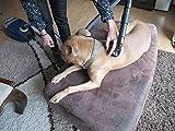 PetBrush Fellbürste für den Staubsauger – Schonende Fellpflege für Hunde & Katzen - 5