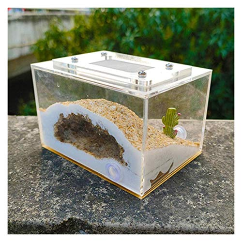 JKFZD Ameise Farm Mini Gips Ameise Nest Wurm Feeding Box Pädagogisches Formikarium Habitat Lernen Wissenschaft Spielzeug Geburtstagsgeschenk (Color : C, Size : 10x7.5x6.5cm)