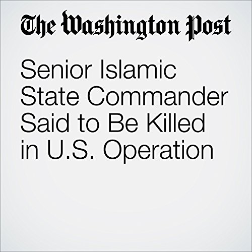 Senior Islamic State Commander Said to Be Killed in U.S. Operation audiobook cover art