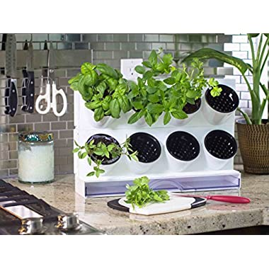 Watex Pixel Garden Desktop, Kitchen Farm, White