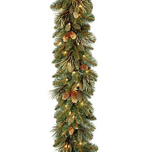 NATIONAL Tree COMPANY Carolina Pine Garland with Clear Lights, 9 Feet