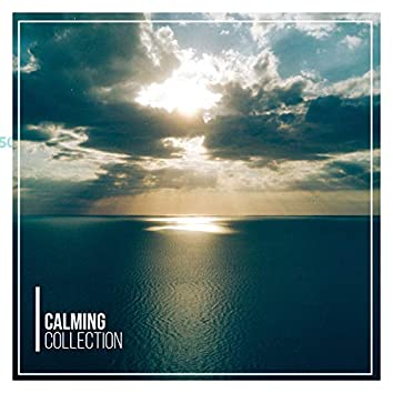 #15 Calming Collection for a Great Nights Sleep