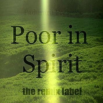 Poorin Spirit (Organic Housemusic Mix) - Single