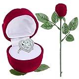 Dandeliondeme Ohrring Ring Halskette Armband Display Box Romantische Verlobungsring Hochzeit Rose, mit Stem Jewelry Case