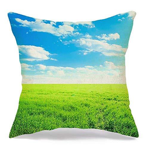 Decoración Throw Pillow Cover Funda de cojín Día Luz del sol Pradera Granja Crecimiento exterior Césped Campo de pasto Bajo la naturaleza Parques Césped claro al aire libre Funda de Cojine