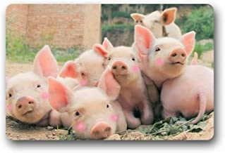 ZMvise Rubber Cute Pig Doormat Outdoors Indoor Washable Home Floor Mats Rugs 18 x 30 inch