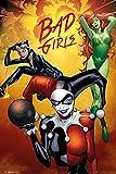 Empire Merchandising 687067 DC Comics, Badgirls Group, diseño del Cartel de impresión de póster de la película, de tamaño de 61 x 91,5 cm
