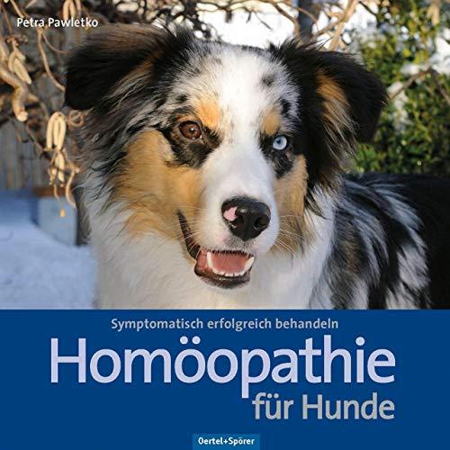 Homöopathie für Hunde: Symptomatisch erfolgreich behandeln