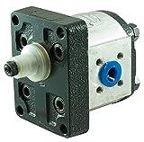 Pompa idraulica gruppo 2-12cc Dx di Ama