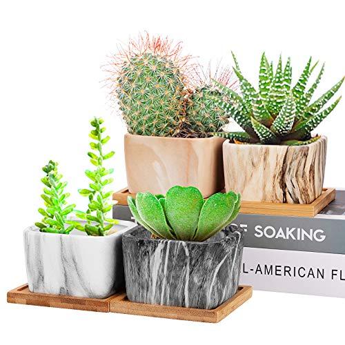 Danolt Maceta para Plantas Suculentas, 4pcs Maceta de Cactus para Interiores de Cerámica Pequeñas...