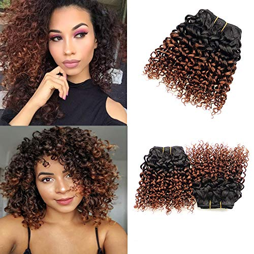 T1B/33 Color 8 Inch Jerry Curly Wave Humna Hair Bundles 50g/Bundles 4Pcs Two Tone Ombre Colored Short Human Hair Bundles For Bob Hairstles Brazilian Human Hair Weave 8 Inch Double Drown Weft(8 Inches,T1B/33)