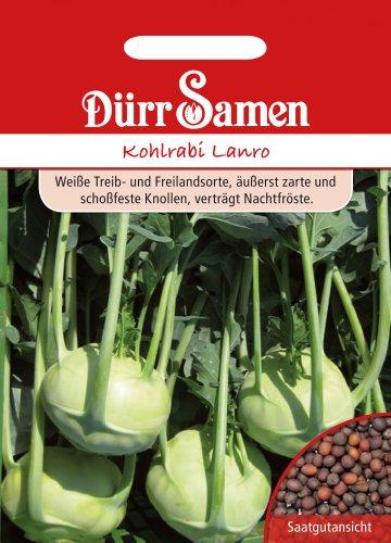 Dürr-Samen Kohlrabi Lanro