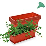 GROWNEER 6 Packs terracotta planters