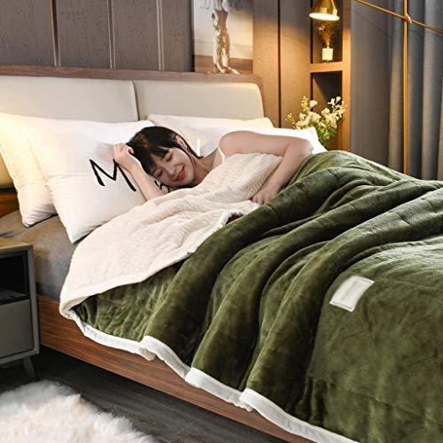 LXDWJ Mantas y lanzamientos Adultos espesas cálidas Mantas de Invierno Reina Franela Mantas en Cama (Size : 180x200cm 2.3kg)