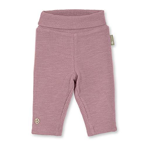 Sterntaler baby-meisjes Pantalon Côtelé Avec Doublure, taille: 6-9 mois, roze, 5701910 broek, violet (lichtpaars 650), één maat (fabrikantmaat: 68)