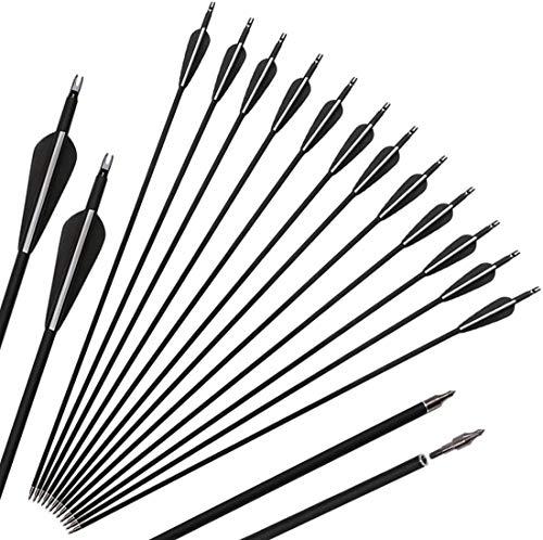 DZGN 12 Paquete de Carbono Flecha Práctica Flechas de Caza con Puntos Nock y reemplazable de Campo Ajustables para el Compuesto y Arco recurvado,32inch