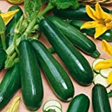Shop Meeko Kings Seeds - zucchine Battani F1-10 Semi