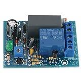 AC 220V Ritardo Timer di Temporizzazione Turn Off Modulo di Spegnimento Temporizzato dell'Interruttore Relè 10A 250V AC/10A 30V DC(Ritardo 0 ~ 10 secondi)