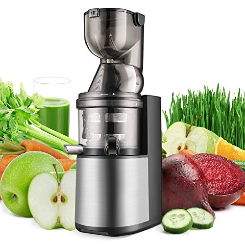 Flexzion Slow Masticating Juicer - Cold Press Machine Juice Extractor Easy to...